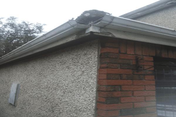 Fascia and Soffit Supply Repairs in Dublin