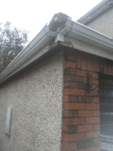 Guttering Replacement in Dublin southdublinroofing.ie